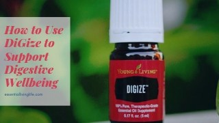 How to Use DiGize to Support Digestive Wellbeing